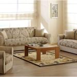 Fabric-Sofas-Udaipur-Rajasthan7